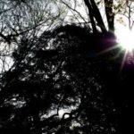 太陽の光が体を蝕む!そんな症状にどう立ち向かう?